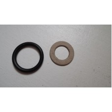 Speedo drive gasket and oil seal